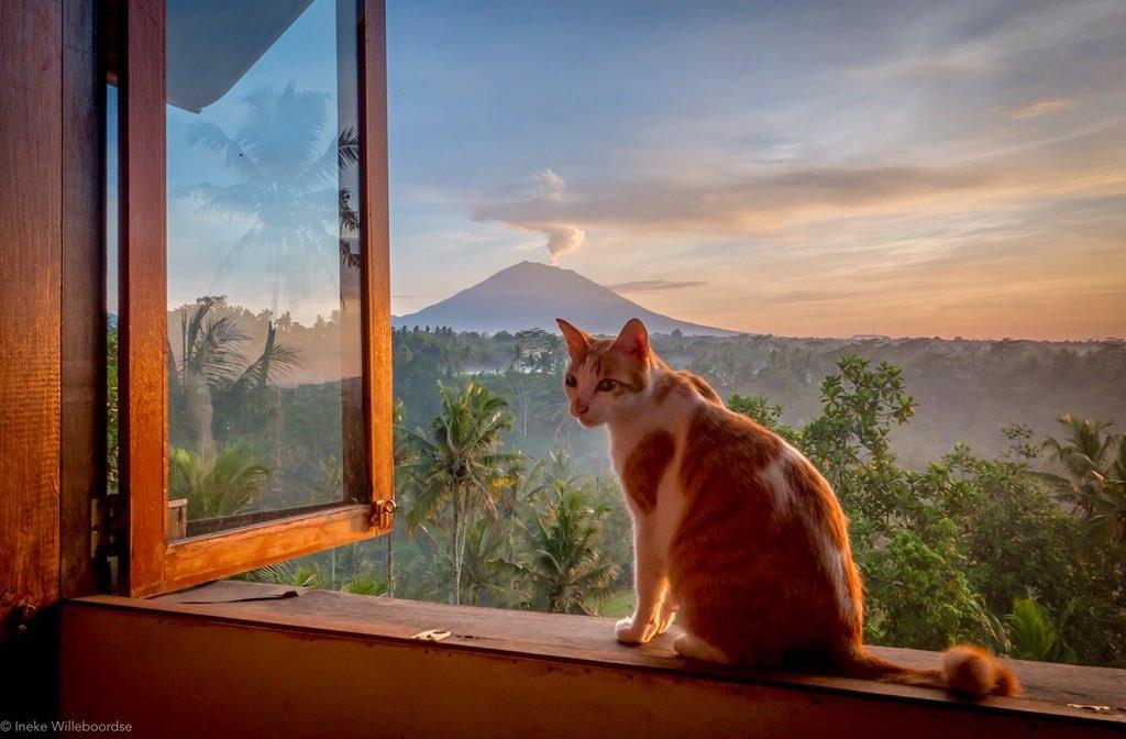 Mt Agung 14 dec 2017