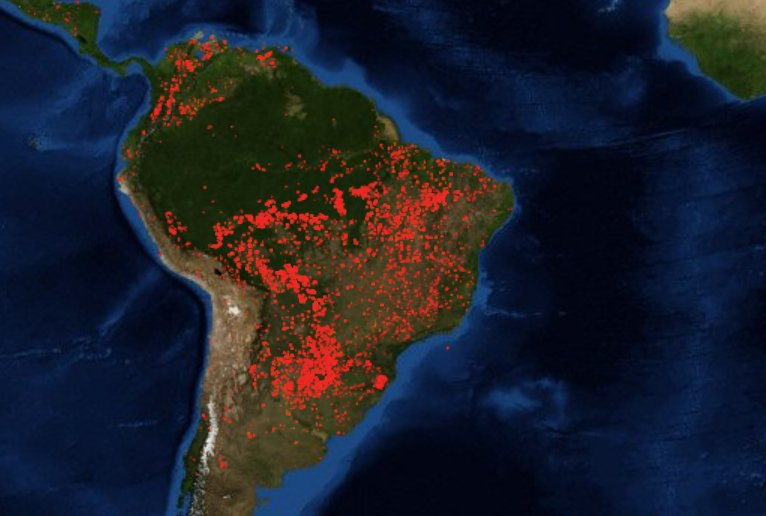 Bosbranden Amazone