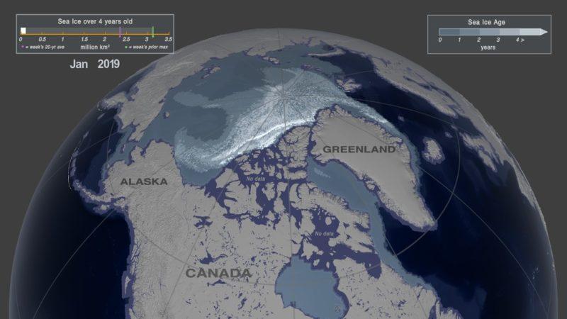 Arctisch zeeijs