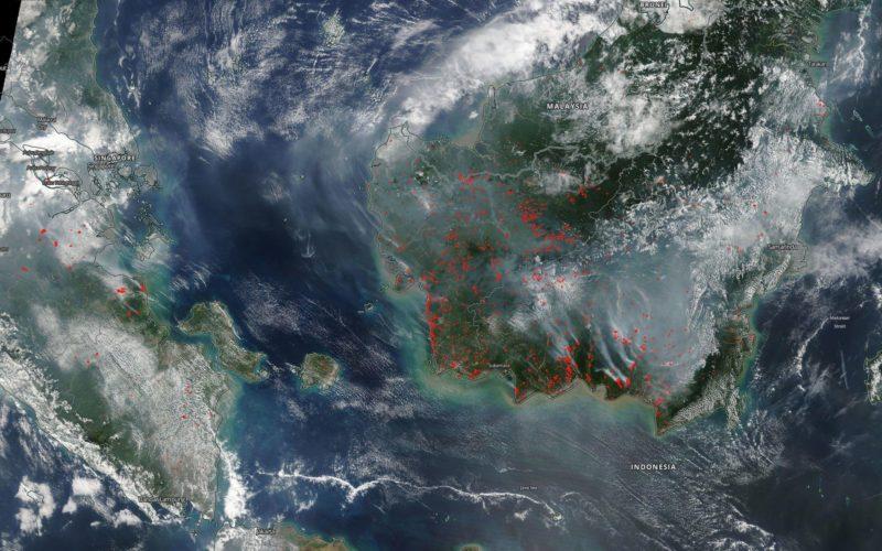 Ook bosbranden in Indonesië