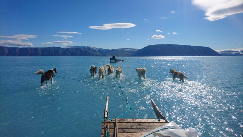 Het Zeeijs op Groenland