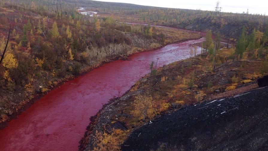 Daldikan rivier in Siberië vervuilt