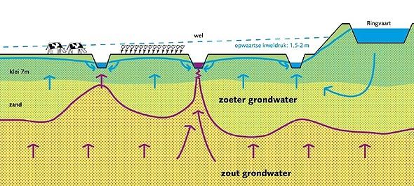 verdeling_zoet_en_zout_grondwater